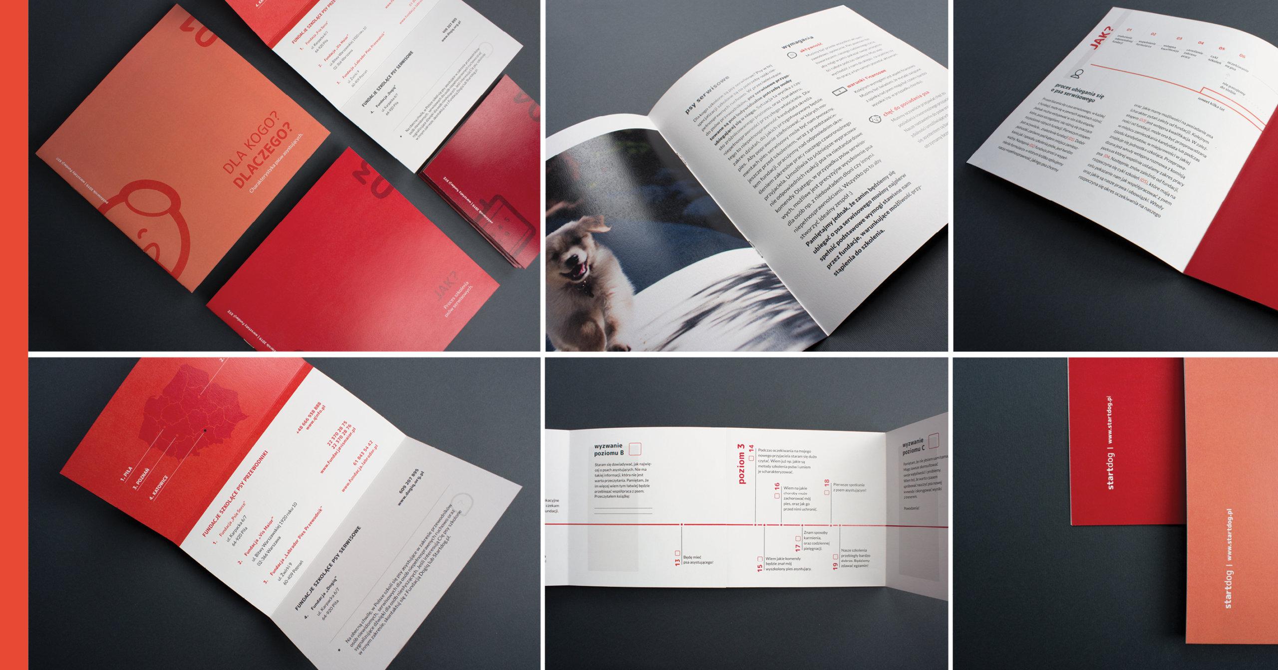Na ilustracji znajduje się sześć połączonych zdjęć. Zaprezentowane są na nich foldery informacyjne wspierające proces pozyskania psa asystującego.